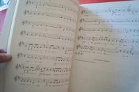 100 Songs für 3 plus 3 Akkorde Band 2 Songbook Notenbuch Vocal Guitar